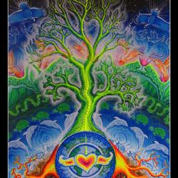 Évolution de l'Amour universel