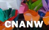CNANW_logo